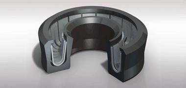 Spring-Energized Seals - Design